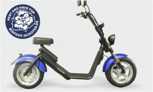 Bigfoot E-Scooter Vermietung Xanten